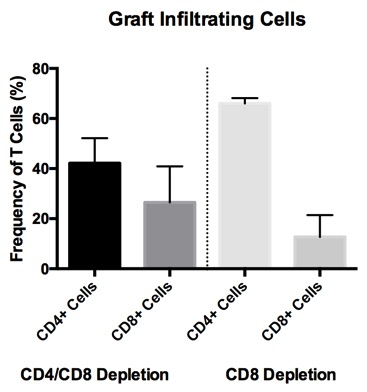 Cd4 Depletion Is Necessary And Sufficient For Long Term